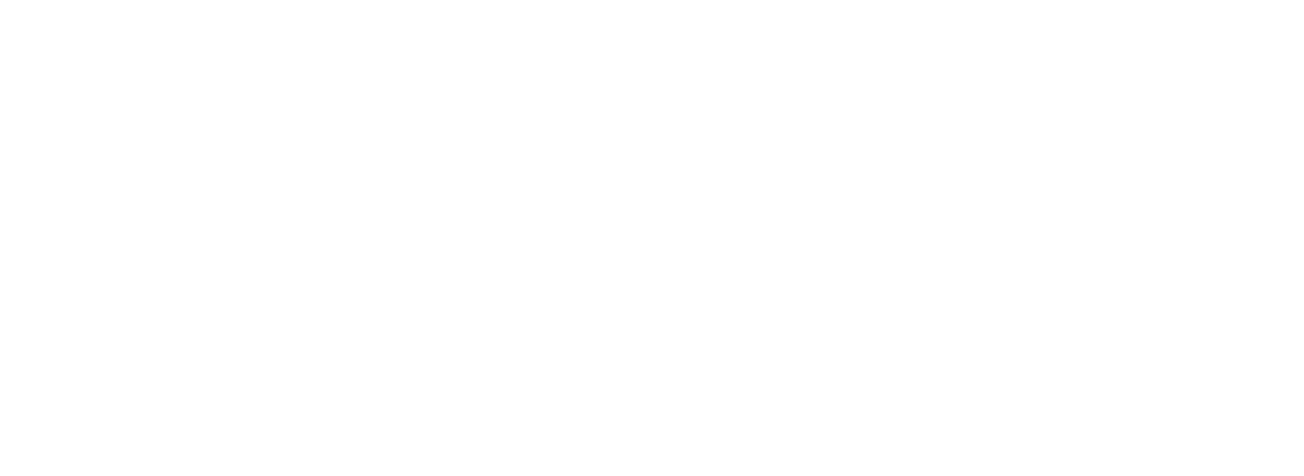 Janer Consulting